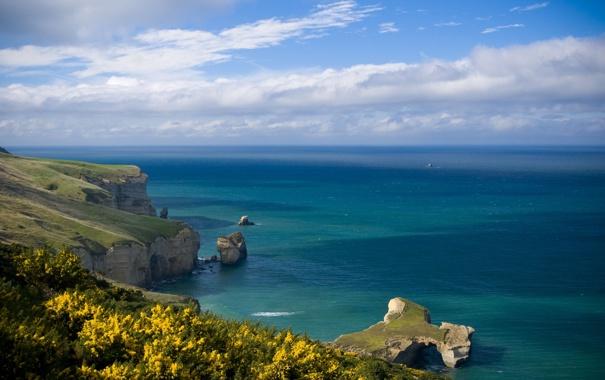 Фото обои море, небо, трава, вода, облака, пейзаж, цветы