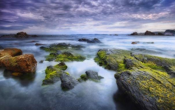 Фото обои море, тучи, камни, мох