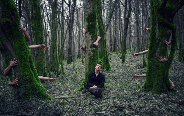 Фото обои лес, руки, парень