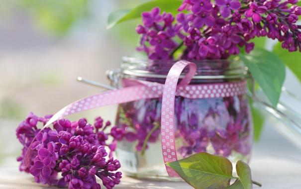 Фото обои весна, сиреневые, сирень, банка, цветы