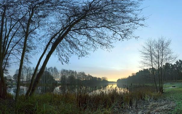 Фото обои трава, вода, деревья, природа, пейзажи, вид, фотографии