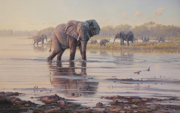 Фото обои животные, деревья, пейзаж, птицы, река, картина, арт