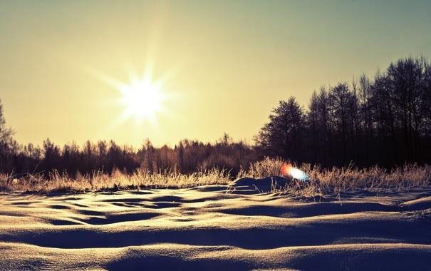 Фото обои зима, солнце, снег, деревья, природа, сугробы