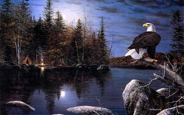 Фото обои осень, ночь, река, орел, луна, лодка, костер