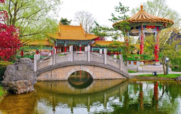 Фото обои пруд, беседка, Chinese Garden, Цюрих, Zürich, Switzerland, мост