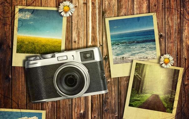 Фото обои цветы, фото, фотография, камера, vintage