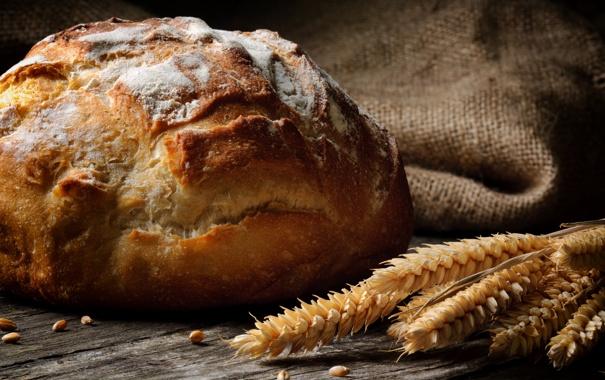 Фото обои пшеница, белый, круглый, зерна, хлеб, колосья