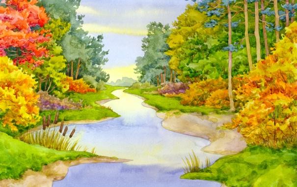 Фото обои лес, лето, небо, цветы, камыши, краски, речка