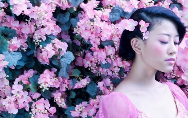 Фото обои девушка, цветы, японка