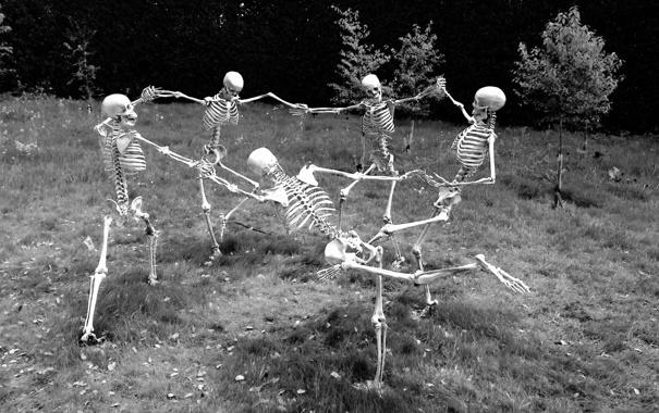 Фото обои настроение, танец, скелеты
