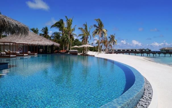 Фото обои пальмы, океан, бассейн, причал, отель, экзотика