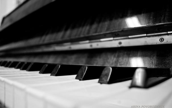 Фото обои макро, клавиши, черно-белое, фортепиано, пианино