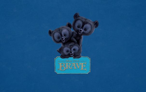 Фото обои надпись, синий фон, табличка, три, Brave, Храбрая сердцем, трое