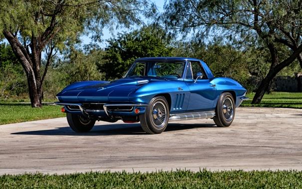 Фото обои Corvette, Chevrolet, шевроле, 1965, Stingray, корветт