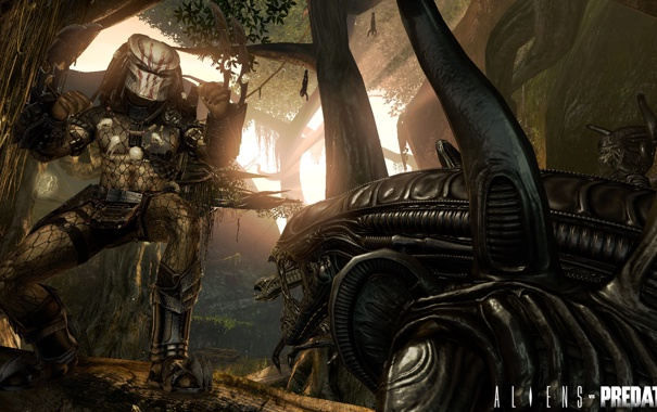 Фото обои лес, хищник, ИГРА, Alien vs Predator, чужые, трупы военных