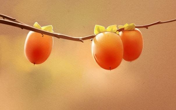 Фото обои ветка, ягода, арт, плод, хурма, persimmon