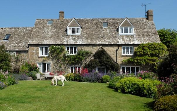 Фото обои дом, газон, собака, сад, Великобритания, кусты, Cotswolds