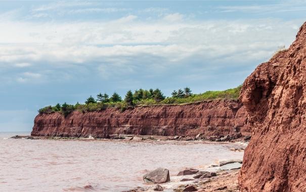 Фото обои песок, море, обрыв, берег, глина