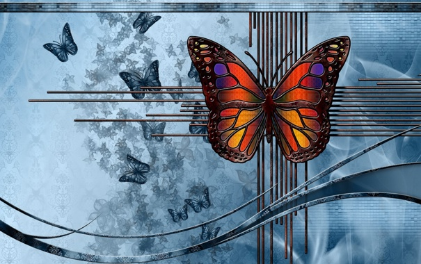 Фото обои абстракция, бабочка, цвет, форма