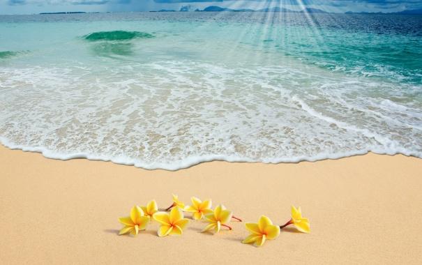 Фото обои песок, море, пляж, солнце, summer, sunshine, beach