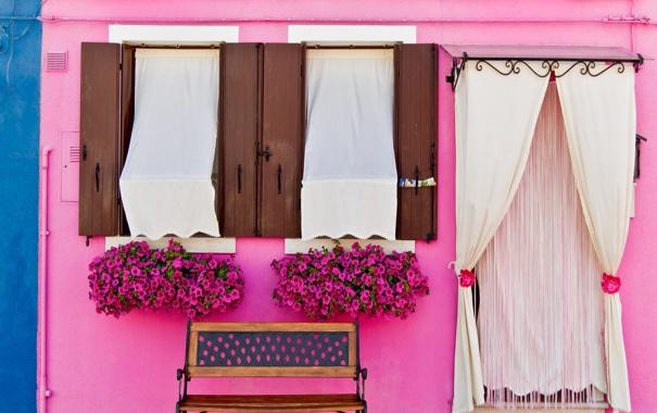Фото обои цветы, скамейка, дом, стена, улица, розовая, фасад