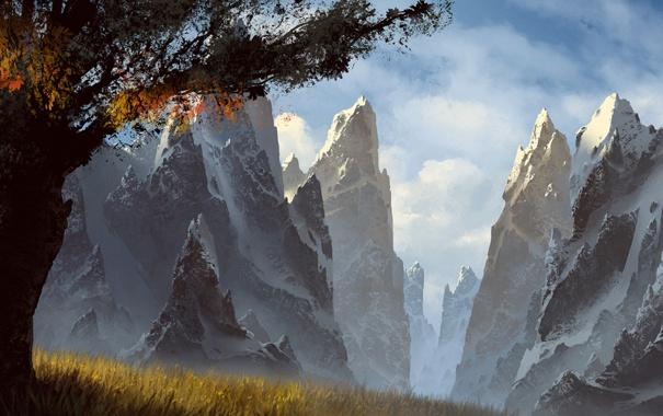 Фото обои трава, облака, снег, горы, дерево, вершины, арт