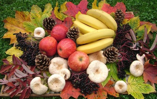 Фото обои листья, яблоки, грибы, бананы, шишки