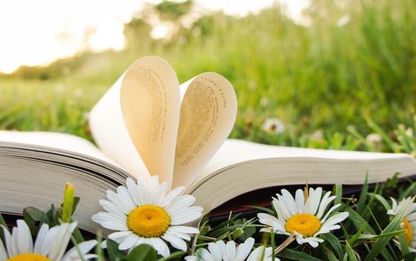 Фото обои книга, страницы, трава, лето, сердце, ромашки