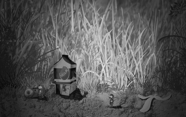 Фото обои трава, насекомые, молоко, муравей, банка, кузнечик, домик