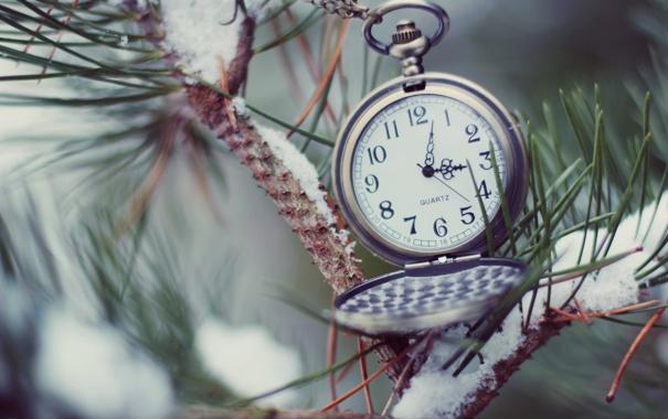 Фото обои иголки, часы, ёлка, циферблат