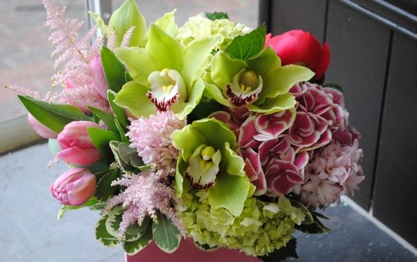 Фото обои букет, Тюльпаны, Орхидеи, Гортензия, Морозник
