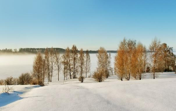 Фото обои зима, природа, Латвия