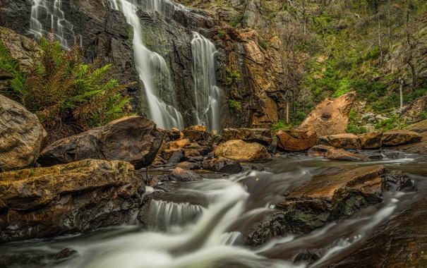 Фото обои скалы, поток, Виктория, Австралия, водопад Маккензи