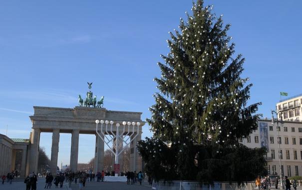 Фото обои праздник, ель, Германия, Берлин, Бранденбургские ворота