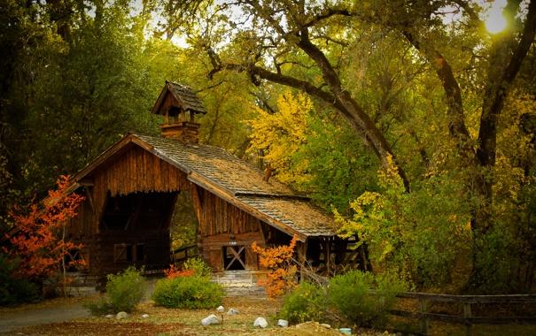 Фото обои осень, лес, деревья, мост, природа, сооружение, сарай