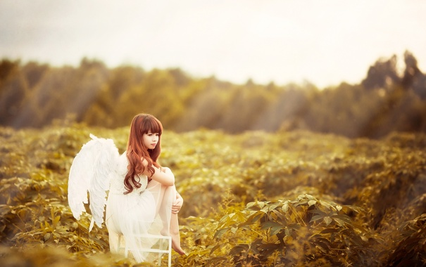 Фото обои взгляд, девушка, ангел, азиатка