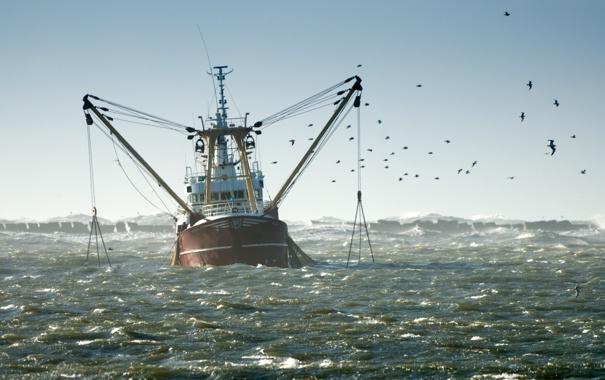 Фото обои ocean, birds, seagulls, fishing boat