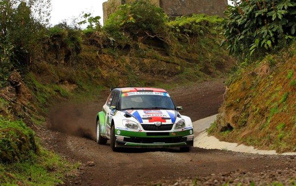 Фото обои Авто, Спорт, Гонка, WRC, Rally, Ралли, Передок