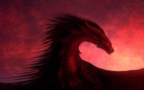 Фото обои дракон, крылья, красный фон