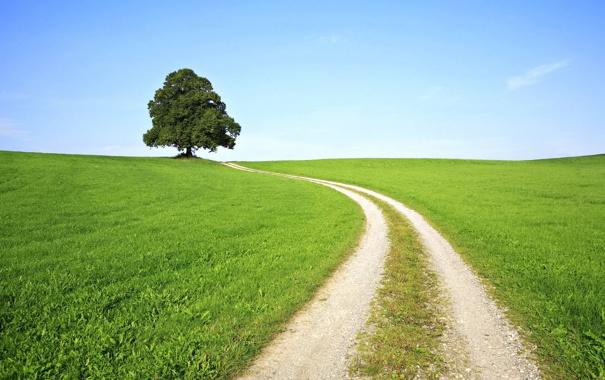 Фото обои дорога, небо, трава, деревья, природа, холмы, пейзажи