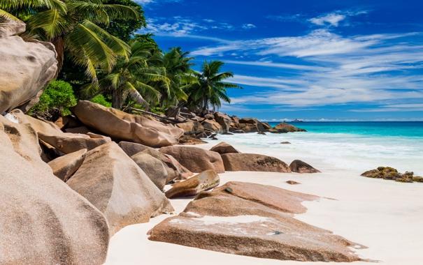 Фото обои песок, море, пляж, берег, summer, beach, sea