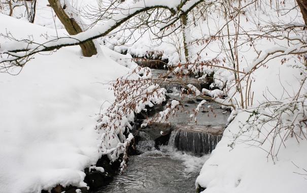 Фото обои зима, лес, снег, деревья, ручей, сугробы