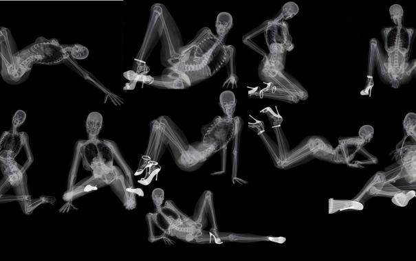 Фото обои скелет, туфли, черный фон