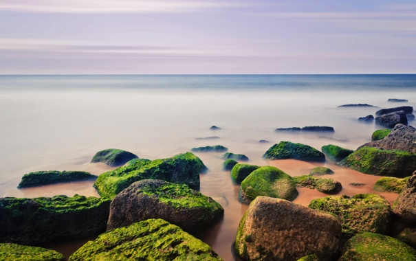 Фото обои песок, море, пляж, небо, водоросли, камни, берег