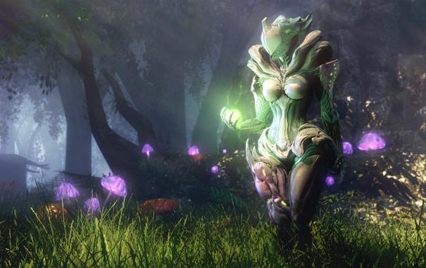 Фото обои лес, девушка, магия, грибы, арт, Warframe