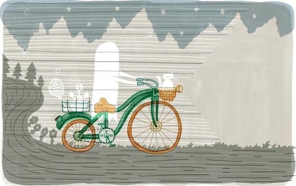 Фото обои дорога, кот, велосипед