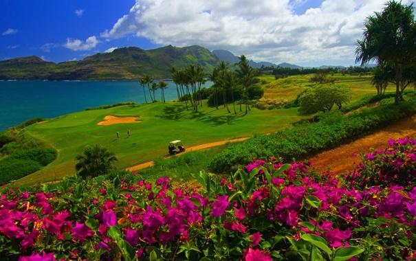 Фото обои море, небо, трава, облака, цветы, горы, пальмы