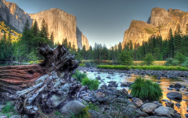Фото обои green, grass, river, trees, nature, water, mountains