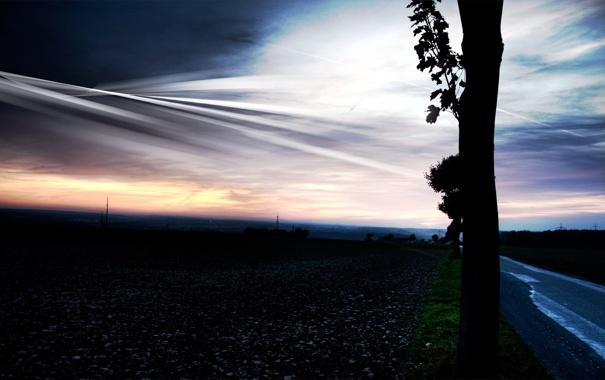 Фото обои дорога, дерево, вечер