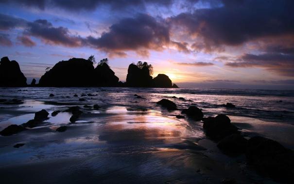 Фото обои песок, лето, острова, деревья, закат, скала, парк